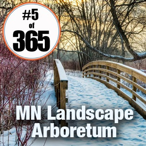 #5 of 365 Walk the MN Landscape Arboretum - January 5, 2015