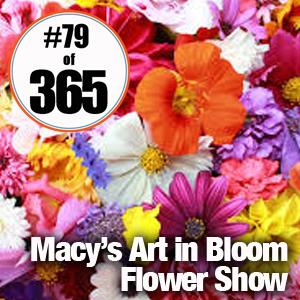 Day 79 of 365 Macys Art in Bloom Flower Show #365TC