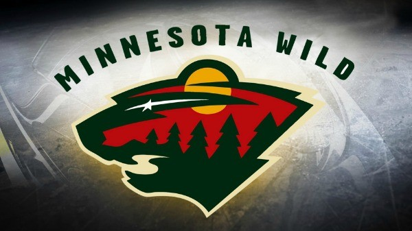 Day 105 of 365 MN Wild Pep Rally #365TC