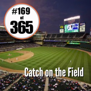 Day 169 of 365 Catch on the Field #365TC