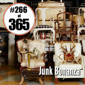 Day 266 of 365 Junk Bonanza 2015 #365TC