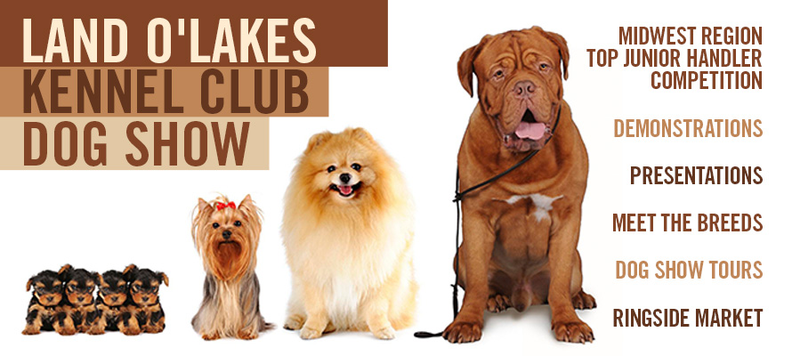 Land O'Lakes Kennel Club Dog Show